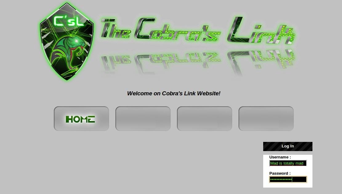 The Website Captur10