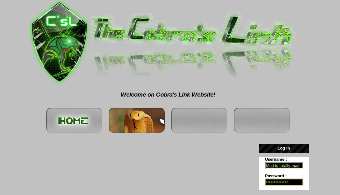 The Website Captur11