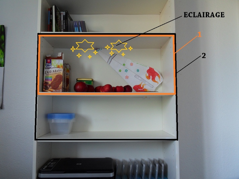 Projet terrarium dans une étagère Sdc12516