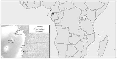 Sphères et les cercles d'influence en Afrique Subsaharienne  Untitl22