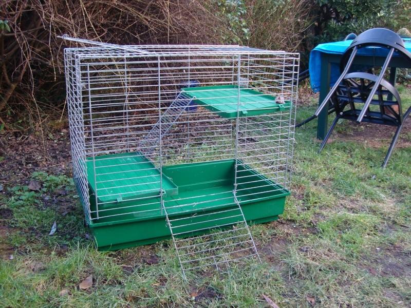 Important cherche cage rat furet chinchilla entre 20et 40 €  Dsc01310