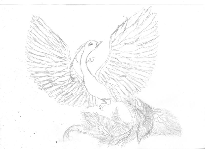 Line du Phoenix posté en numérik [Firelove] Mm_00110