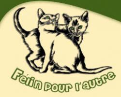 Présentation des associations partenaires Felins10
