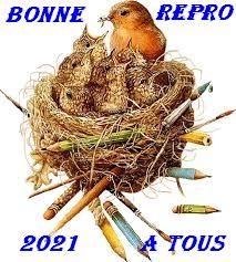 ABC du canari - Portail Tzolzo16