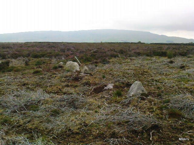 New Settlement / Enclosure found at Dumpit Hill, Hebden Dumpit10