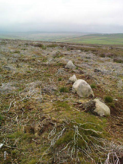 New Settlement / Enclosure found at Dumpit Hill, Hebden Dumpit11