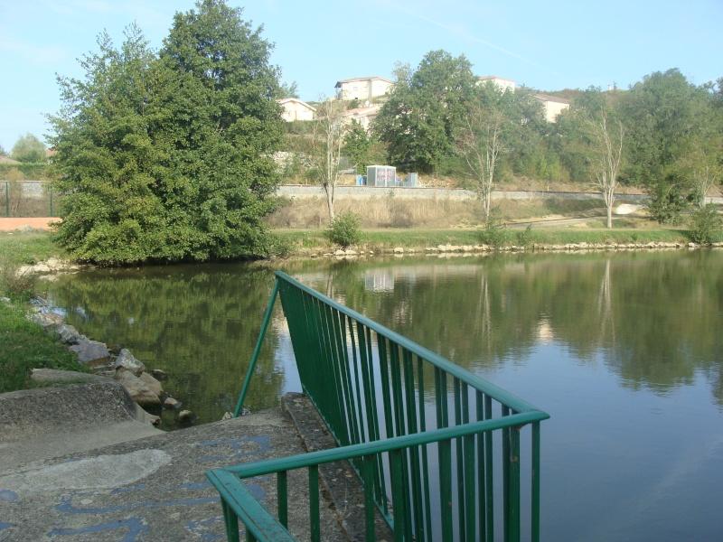Mini Rasso midi pyrénées 14 15 16 sept  lac Rouffiac tolosan - Page 5 Dsc05752