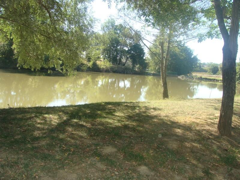 Mini Rasso midi pyrénées 14 15 16 sept  lac Rouffiac tolosan - Page 5 Dsc05755