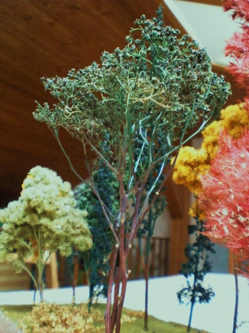 Bäume Baume_15