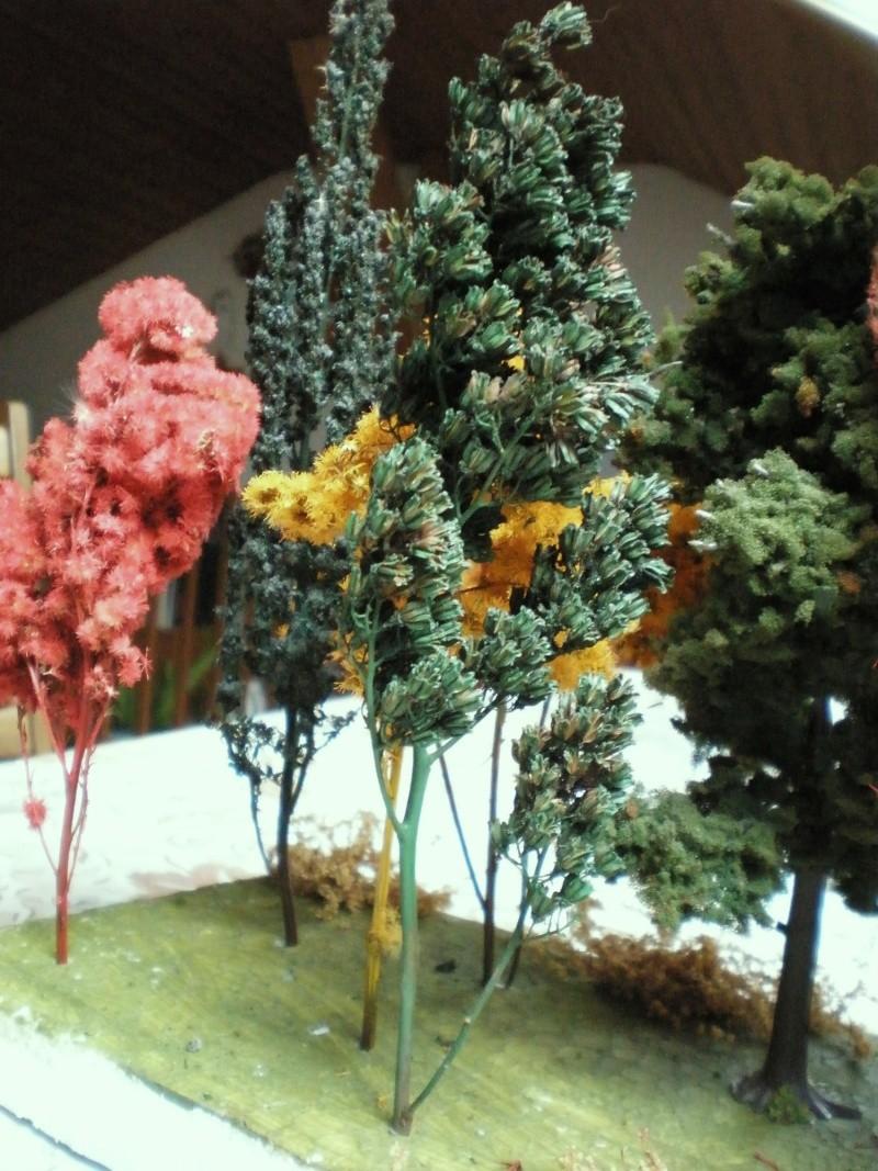 Bäume Baume_17