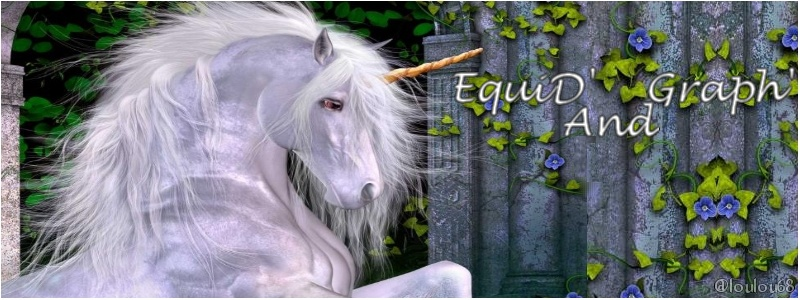 EquiD and Graph