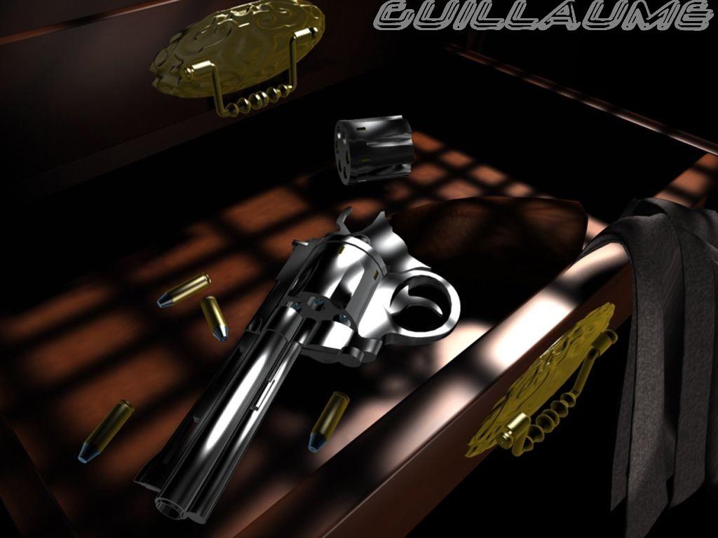 Galerie d'Aloha[Débutant] Gun10
