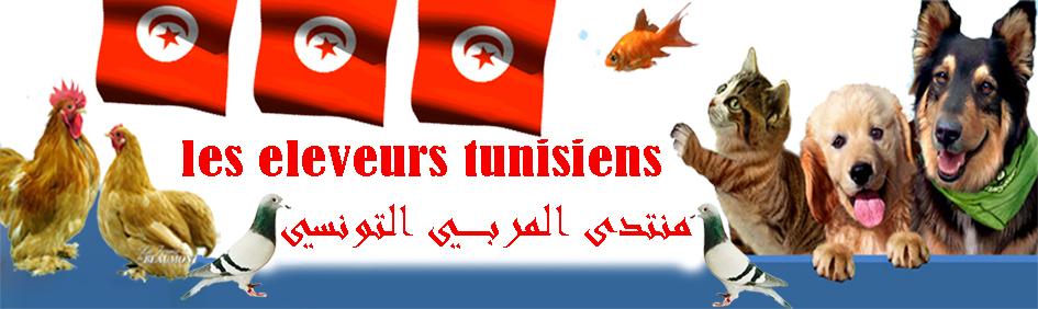 eleveurs-tunisiens
