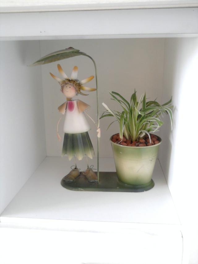 les plantes de Lelow Photo030