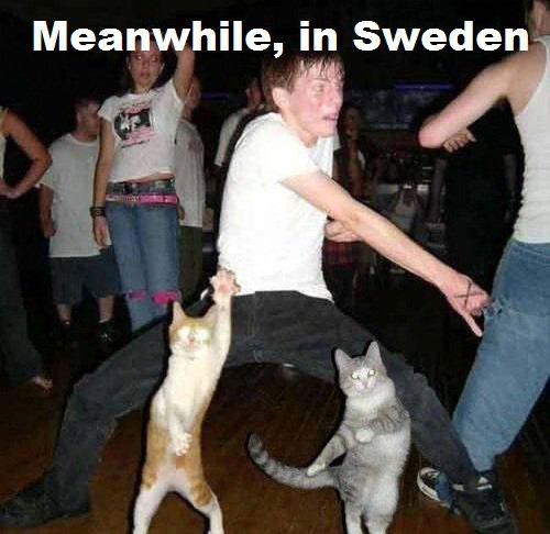 Meanwhile.... Sweden10