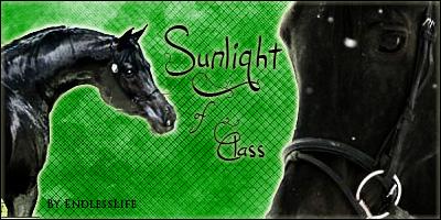 •• box #o3 ▬ Sunlight of Class.  Sunlig11