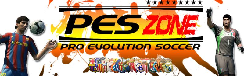 PESZone 2011