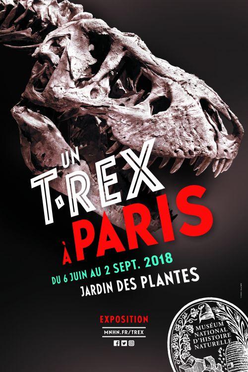Exposition «Trix, Un T-Rex à Paris» Affich10