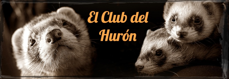 Introducción y Presentación de un nuevo Huron Cdh_sa11