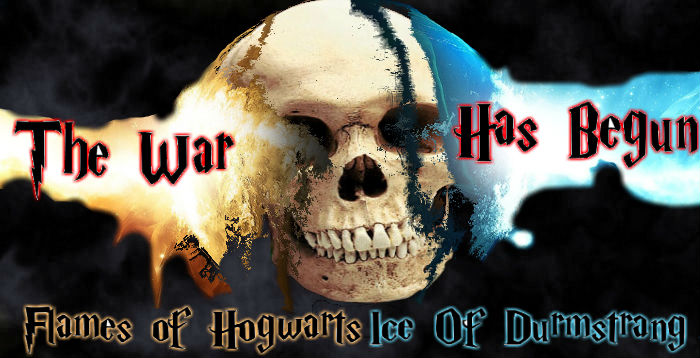 Flames of Hogwarts Ice of Durmstrang Hogwar10