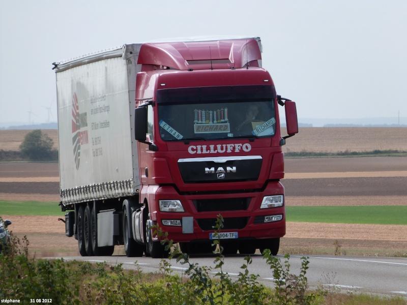 Cilluffo (Marolles, 51) Le_31160