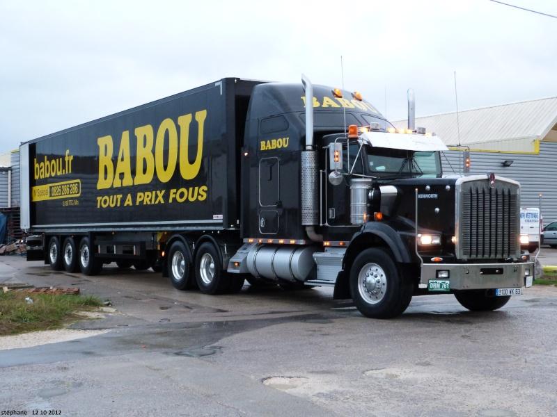 Babou (Cournon, 63) P1040110