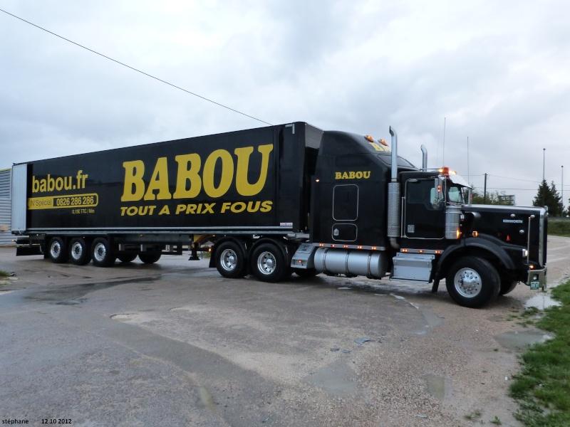 Babou (Cournon, 63) P1040112