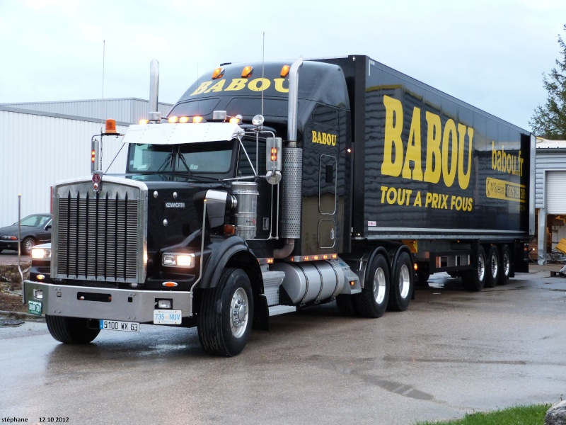 Babou (Cournon, 63) P1040113
