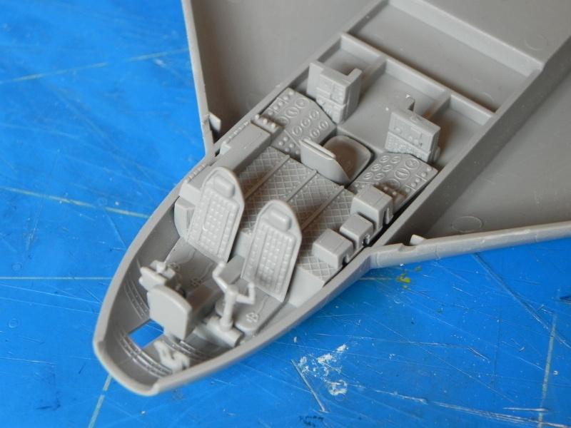 Arado 555 1/72 un Dodo taillé pour le froid! Dscn3313