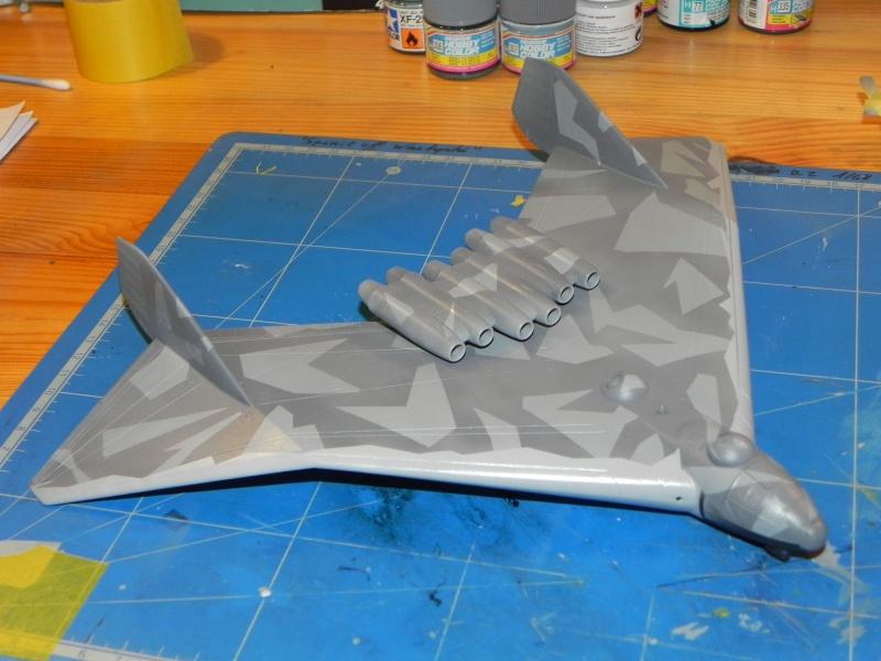 Arado 555 1/72 un Dodo taillé pour le froid! Dscn4612