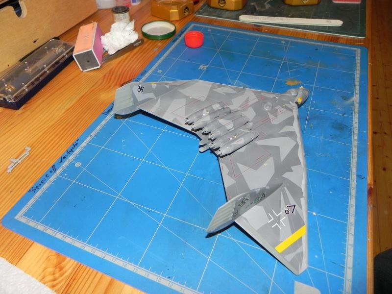 Arado 555 1/72 un Dodo taillé pour le froid! Dscn4614