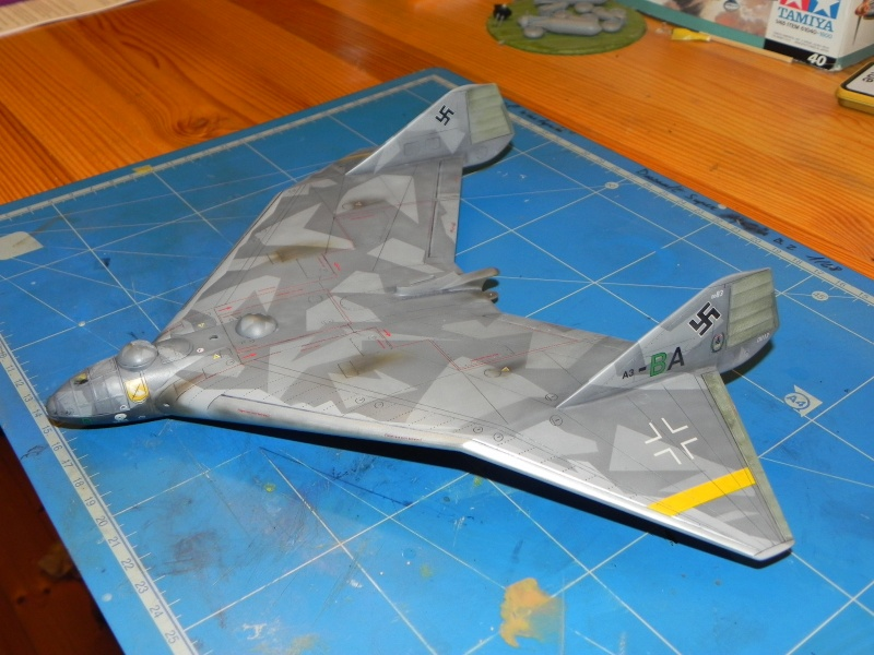 Arado 555 1/72 un Dodo taillé pour le froid! Dscn4616