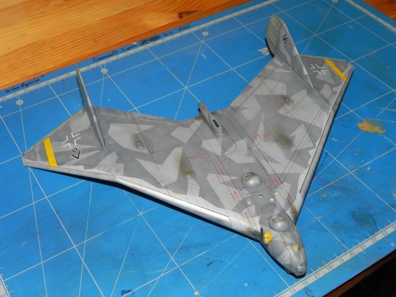 Arado 555 1/72 un Dodo taillé pour le froid! Dscn4710
