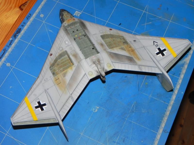 Arado 555 1/72 un Dodo taillé pour le froid! Dscn4711