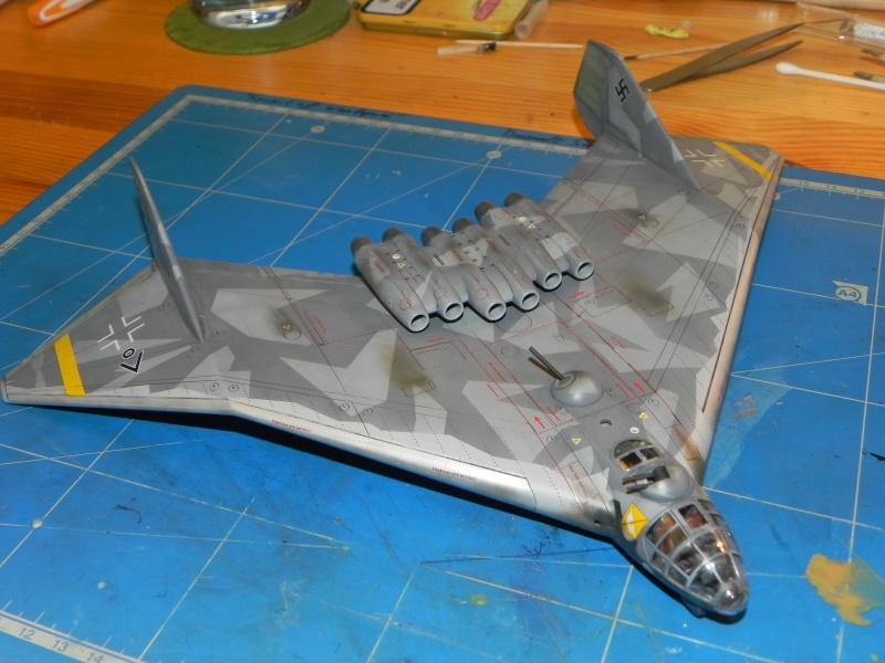 Arado 555 1/72 un Dodo taillé pour le froid! Dscn4717