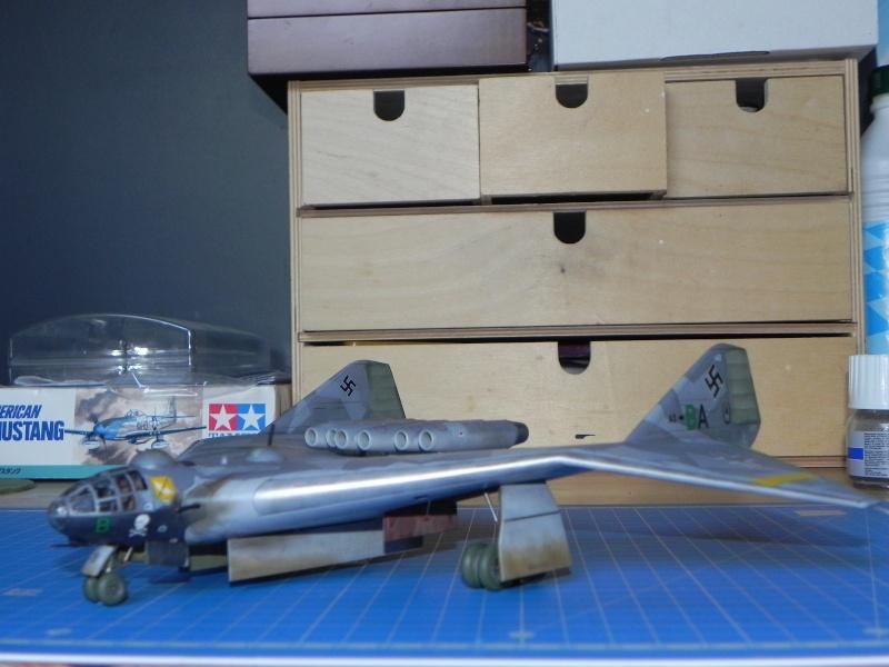 Arado 555 1/72 un Dodo taillé pour le froid! Dscn4721