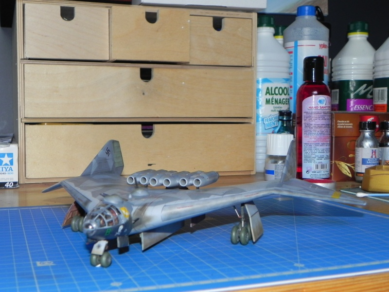 Arado 555 1/72 un Dodo taillé pour le froid! Dscn4722