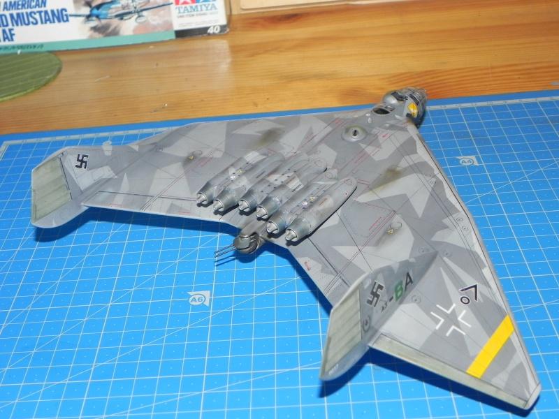 Arado 555 1/72 un Dodo taillé pour le froid! Dscn4724