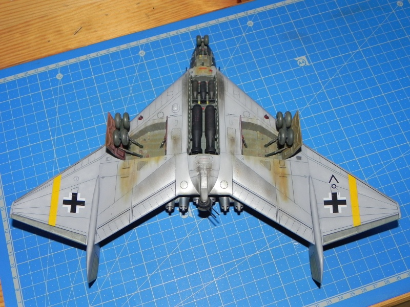 Arado 555 1/72 un Dodo taillé pour le froid! Dscn4725
