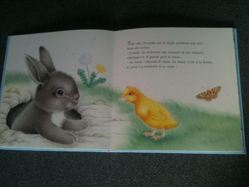Livres enfant + DVD MAJ au 02/07/14 Img_1847