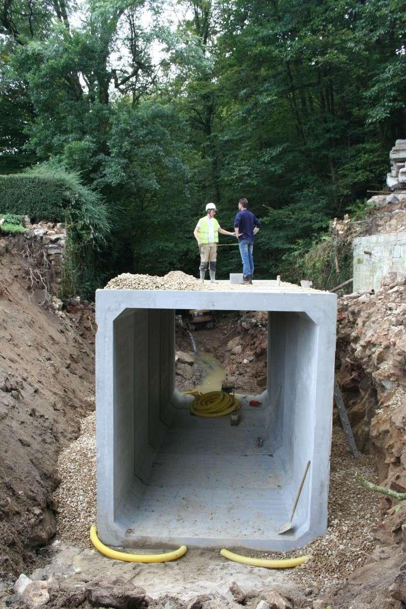 Aménagement d'un pont pour les chauves-souris : ça remu à Pont calek Img_3011