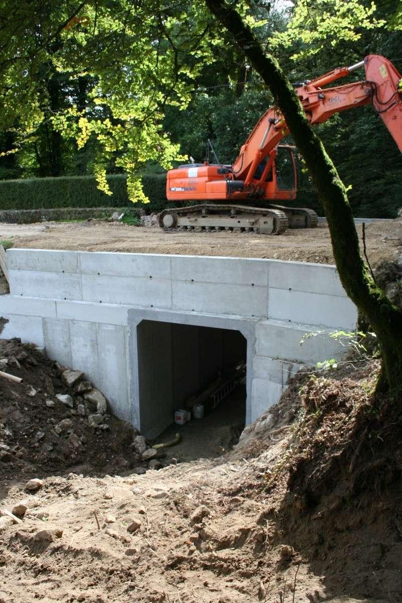 Aménagement d'un pont pour les chauves-souris : ça remu à Pont calek Img_3017