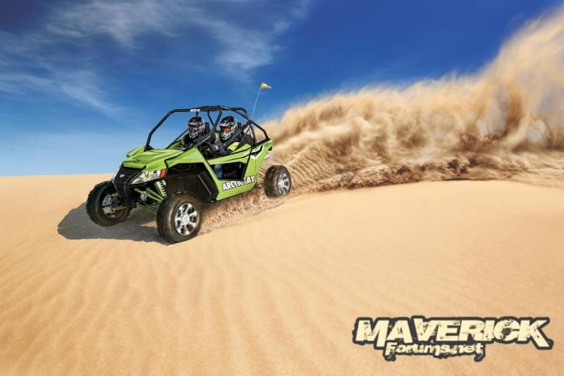 Maverick  Wildca10