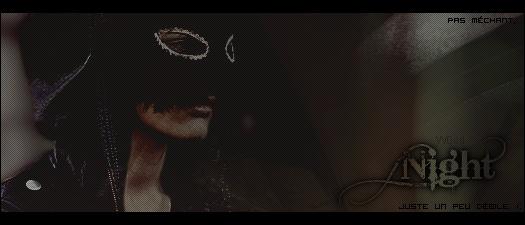 Voir un profil - Blaze Justice Night_10