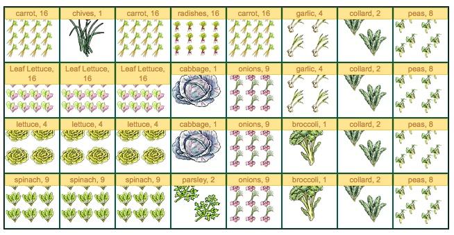 Novice gardener struggling with planning. HELP! :( Spring12