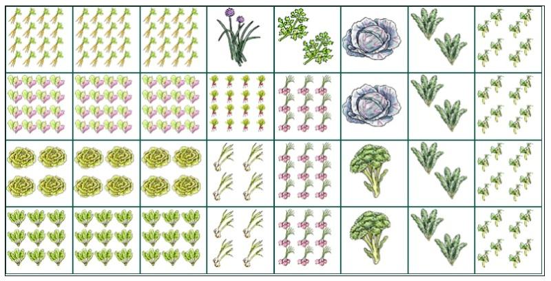 Novice gardener struggling with planning. HELP! :( Spring13