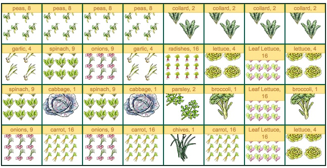 Novice gardener struggling with planning. HELP! :( Spring14