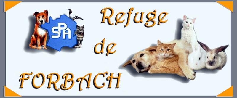 Bannières associations, refuges etc ..... Bannia14