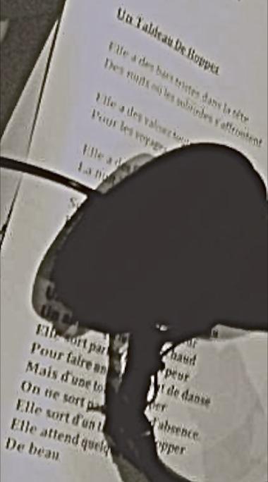 """""""Un Tableau De Hopper"""", chanson du prochain album (spoiler) Captur10"""