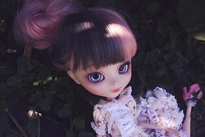 Mai 2012 : Pullip Alice du Jardin Img_6510